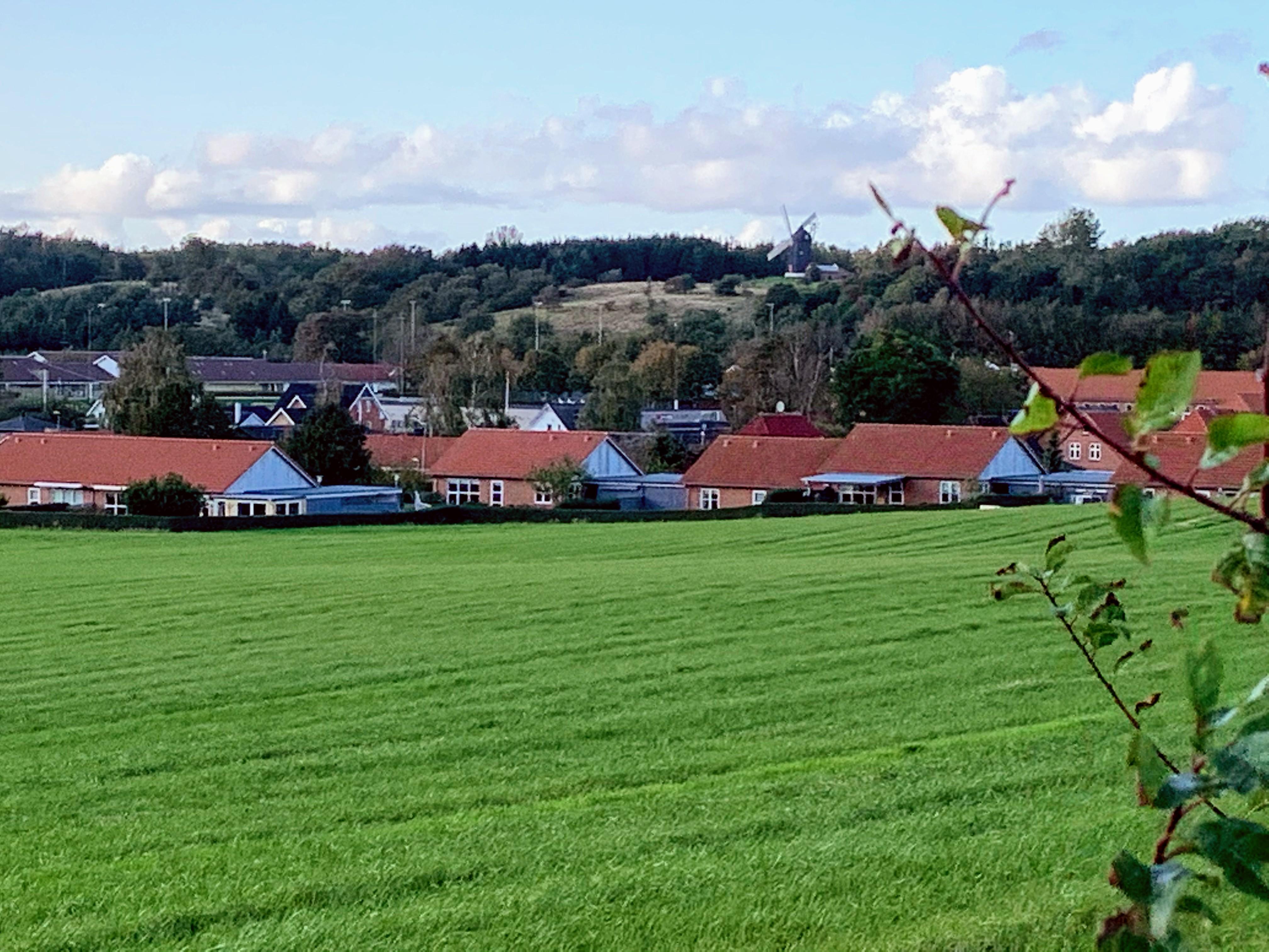 Bælum by med Bælum Mølle i baggrunden