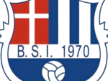 BSI Logo transparent