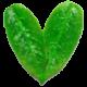 Grønt hjerte transparent